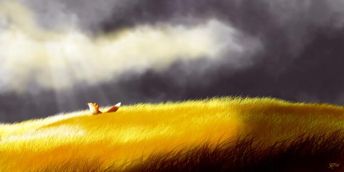 El Zorro y la tormenta